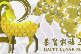 Happy Lunar New Year 2015!